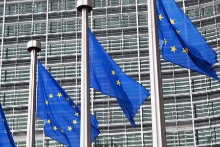 European Union to Declare Broadband Access a Legal Right