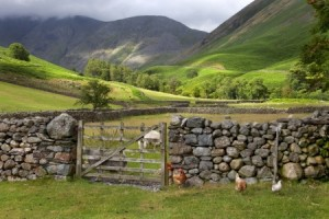 Farmers Build DIY Broadband Network in Rural Britain