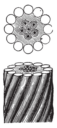 Watch Google Employees Dissect an Undersea Fiber Optic Cable